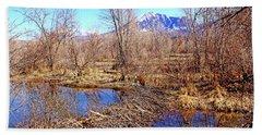 Colorado Beaver Ecosystem Beach Towel