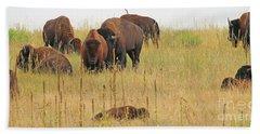 Colorado Buffalo  0097 Beach Sheet