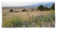 Beach Towel featuring the photograph Colorado Great Sand Dunes Wildflower Field Landscape by Andrea Hazel Ihlefeld