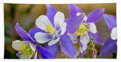 Colorado Wildflower Blue Columbines Beach Towel