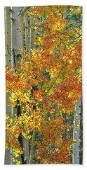 Colorful Aspen Along Million Dollar Highway Beach Sheet