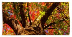 Colorful Autumn Abstract Beach Towel