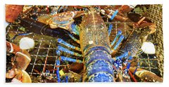 Colorful Blue Lobster Beach Sheet by Allan Levin