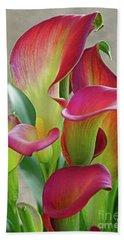 Colorful Calla Lillies Beach Towel