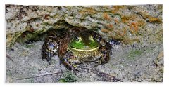Beach Towel featuring the photograph Colorful Camo by Al Powell Photography USA