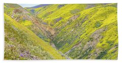 Beach Towel featuring the photograph Colorful Canyon by Marc Crumpler