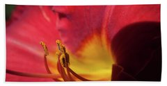 Beach Towel featuring the photograph Colorful Cobras by David Coblitz