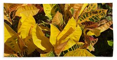 Colorful Crotons Beach Sheet by Kenneth Albin