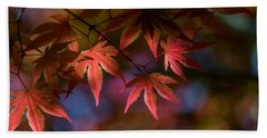 Colorful Japanese Maple Beach Towel