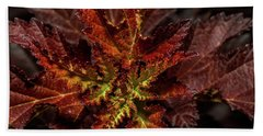 Beach Towel featuring the photograph Colorful Leaves by Paul Freidlund