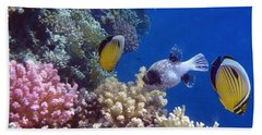 Colorful Red Sea Fish And Corals Beach Sheet