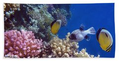 Colorful Red Sea Fish And Corals Beach Towel