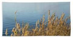Colorful Reeds Beach Towel