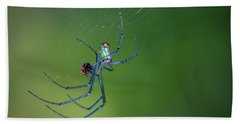 Colorful Spider In Web Beach Towel