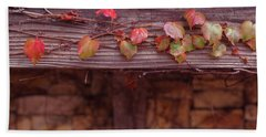 Colorful Tree Leaves Changing Color For Auyumn,fall Season In Oc Beach Towel