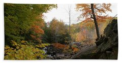 Beach Towel featuring the photograph Colors Along The Stream by Lois Lepisto