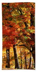 Beach Towel featuring the photograph Colors Of Fall by William Selander