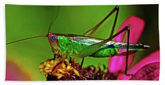 Beach Towel featuring the photograph Colors Of Nature - Grasshopper On A Zinnia 001 by George Bostian