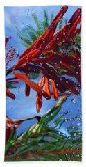 Colors Of Nature Beach Towel