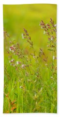 Colors Of Spring Beach Towel by Rachel Mirror