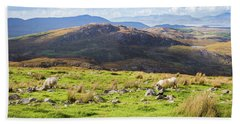 Colourful Undulating Irish Landscape In Kerry With Grazing Sheep Beach Sheet by Semmick Photo