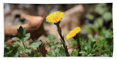 Coltsfoot Beach Towel