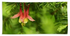 Columbine Blossom Beach Towel