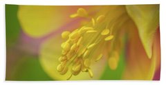 Beach Towel featuring the photograph Columbine by Greg Nyquist