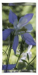 Columbine With Styalized Border Beach Sheet by Chris Thomas