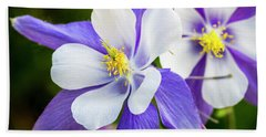 Columbines Inside Beach Towel by Teri Virbickis