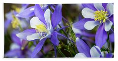 Columbines Beach Towel by Teri Virbickis
