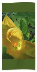 Come Hither - Squash Blossom Beach Towel by Brooks Garten Hauschild