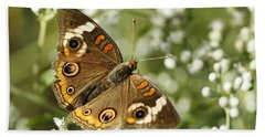Common Buckeye Butterfly On White Thoroughwort Wildflowers Beach Towel