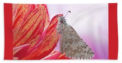 Common Checkered Skipper Beach Towel