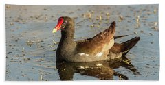 Beach Towel featuring the photograph Common Gallinule by Robert Frederick