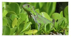 Common Iguana Frolicking In The Shrubbery Beach Towel by DejaVu Designs