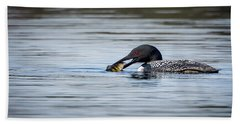 Common Loon Beach Sheet by Bill Wakeley