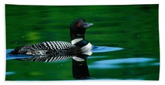 Common Loon In Water, Michigan, Usa Beach Sheet by Panoramic Images