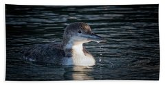 Beach Towel featuring the photograph Common Loon by Randy Hall