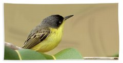 Common Tody-flycatcher Beach Towel