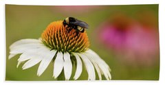 Beach Towel featuring the photograph Coneflower And Bee by Phyllis Peterson