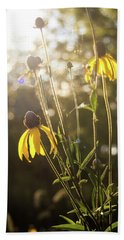 Coneflower In The Sun Beach Sheet