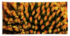 Coneflower Beach Towel by Jay Stockhaus