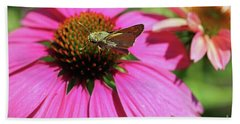 Coneflower Moth II Beach Sheet by Mary Haber