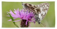 Contact - Butterflies On The Bloom Beach Towel by Michal Boubin