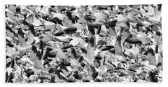 Beach Sheet featuring the photograph Controlled Chaos Bw by Everet Regal
