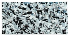 Beach Towel featuring the photograph Controlled Chaos by Everet Regal