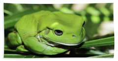 Cool Green Frog 001 Beach Sheet by Kevin Chippindall