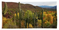 Coon Creek With Saguaros And Cottonwood, Ash, Sycamore Trees With Fall Colors Beach Towel