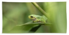 Cope's Gray Treefrog Beach Towel